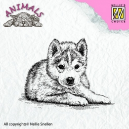 ANI011- clear stamps - animals - Puppy